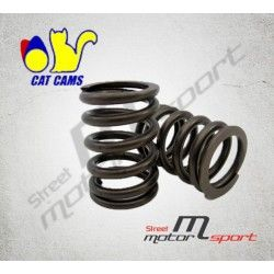 16 Ressorts de soupapes renforcés CAT CAMS Toyota Celica/MR2 3S-GE