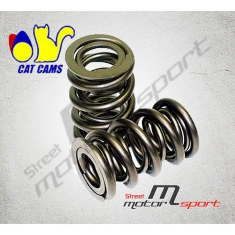 12 Doubles Ressorts de soupapes renforcés CAT CAMS BMW M30 3.0L-3.5L 12V