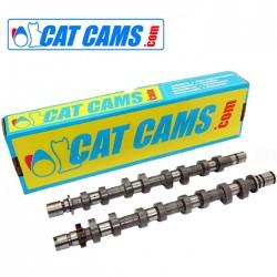 Arbres à Cames Cat Cams Ford 1.8-2.0L 16v ZETEC Poussoirs Mécaniques (Blacktop)